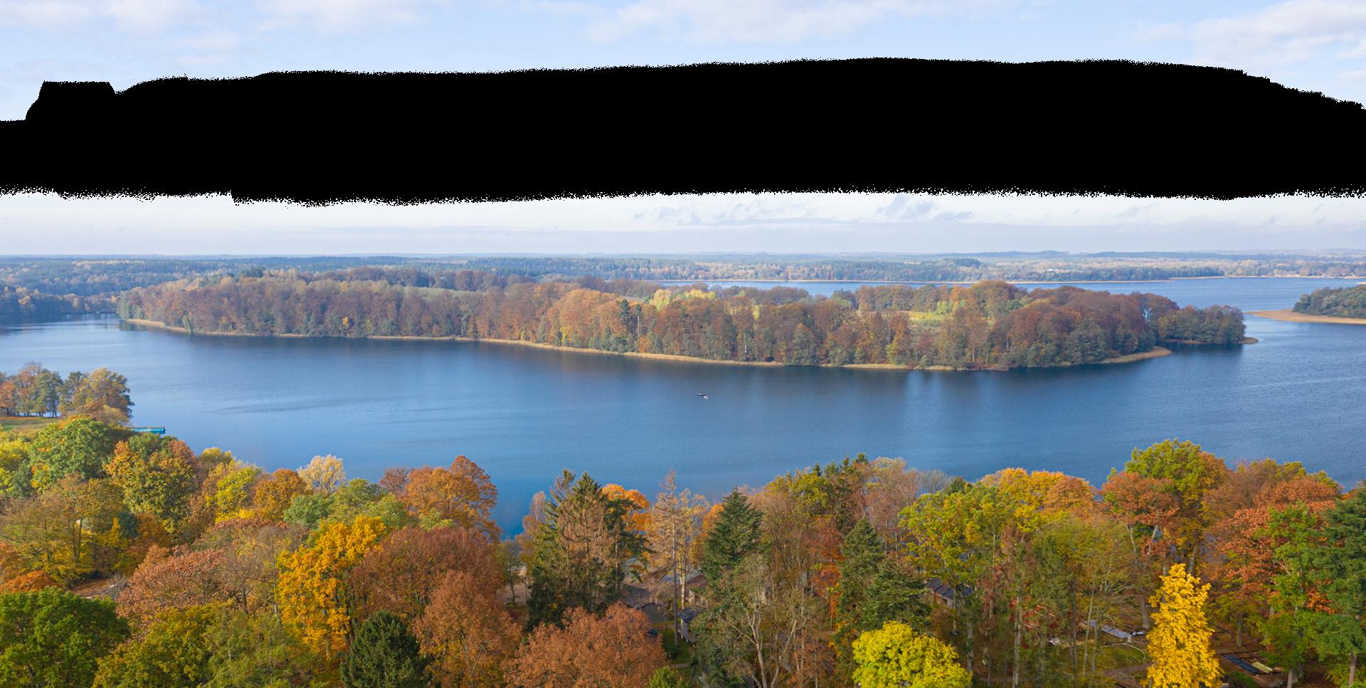 Widok z góry na błękitne jezioro i otaczające je drzewa